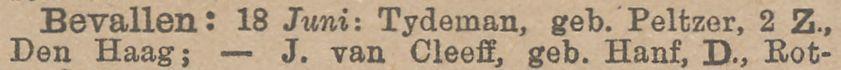 Geboorte van Albert Gustaaf George (Bert) Tydeman en zijn tweelingbroer op 18 juni 1889 in Den Haag