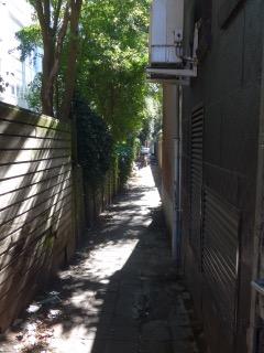 Dit pad leidt naar de tuin en de achteringang van PC Hooftstraat 59. Hier woont Alexander Martinus Pareau met zijn vrouw Louisa Helene Schmidt van 1880 tot 1893. Foto augustus 2016